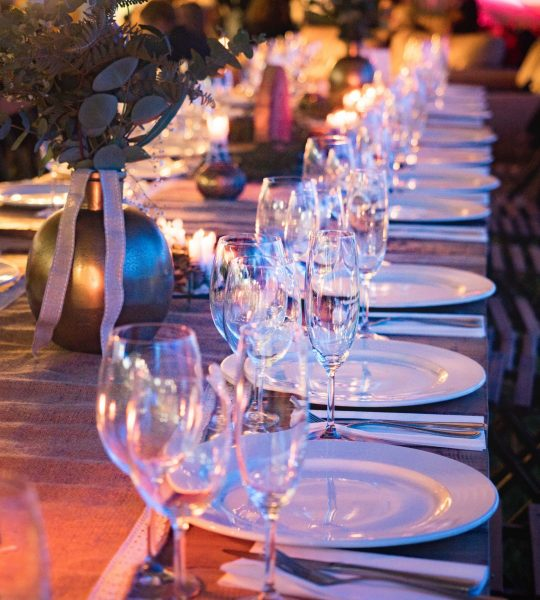 plates-and-wine-glass-on-table-1114425